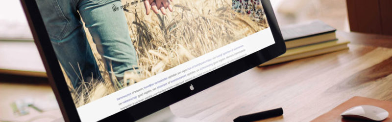 Notarishuys Veldhoven website ontwikkeld door Fenoomenaal